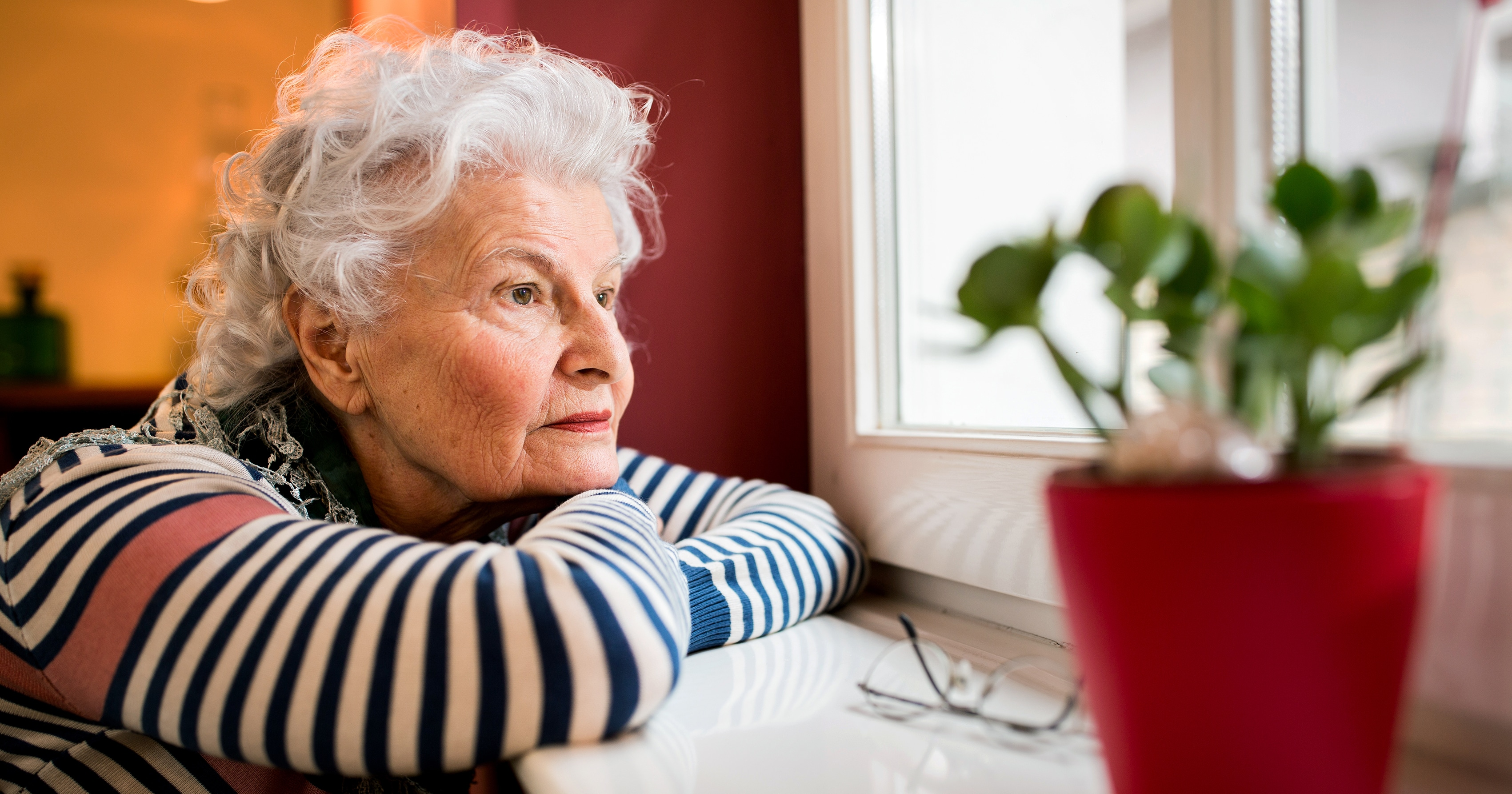 Loneliness, Are We Meeting Senior's Needs?